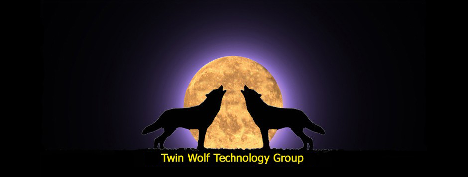 Twin Wolf Technology Group
